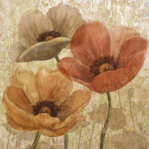 Poppy Allure II by Conrad Knutsen