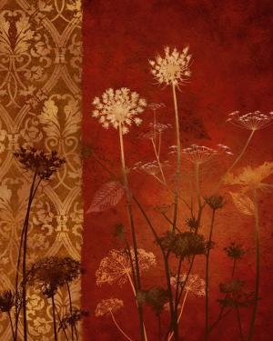 Spice Nature I by Conrad Knutsen
