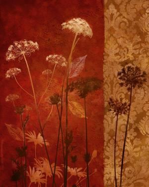 Spice Nature II by Conrad Knutsen