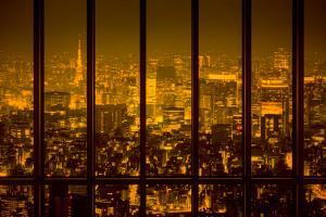 View of a Night City by conrado