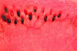 Detailed Closeup of Watermelon by ConstantinosZ
