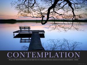 Contemplation (French Translation)