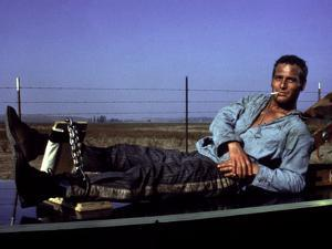 Cool Hand Luke, Paul Newman, 1967, Leg Irons