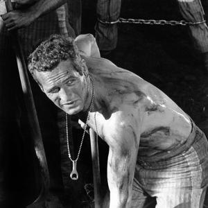 Cool Hand Luke, Paul Newman , 1967