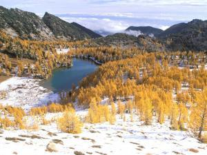 Coony Lake Amidst Golden Larch Trees, Okanogan National Forest, Washington State, USA