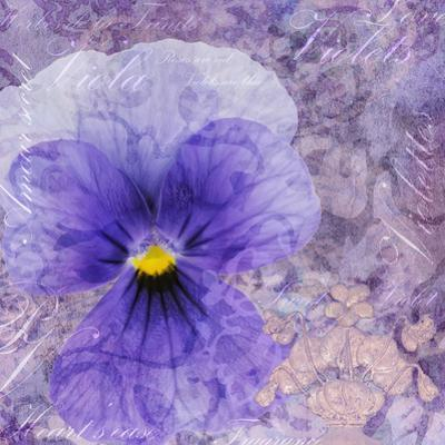 Viola - Secret Love by Cora Niele