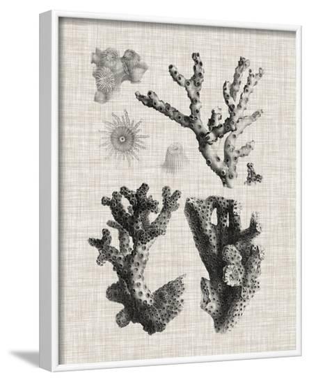 Coral Specimen I--Framed Art Print
