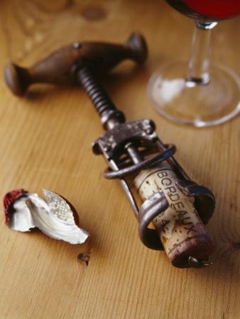 Corkscrew with Cork
