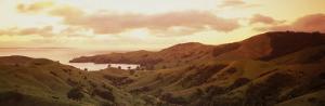 Cormandle Peninsula, New Zealand