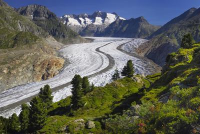 Aletsch Glaciers in Swiss Alps by Cornelia Doerr