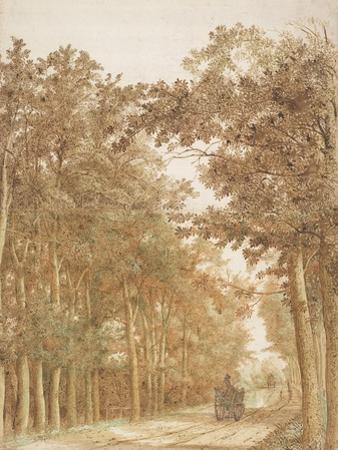 Trail through a forest, c.1638-42 by Cornelis Vroom