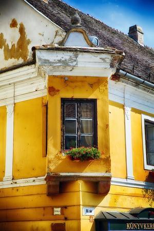 https://imgc.allpostersimages.com/img/posters/corner-window-with-flowers-szentendre-hungary_u-L-Q1AS8300.jpg?p=0