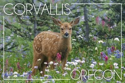 https://imgc.allpostersimages.com/img/posters/corvallis-oregon-deer-fawn-and-wildflowers_u-L-Q1GQGQV0.jpg?p=0
