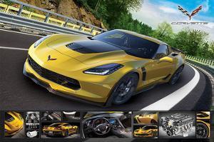 Corvette Stingray with Details