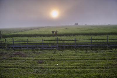 A Man Walks Through Agricultural Fields by Cory Richards