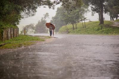 A Young Boy Walks Through the Rain under an Umbrella While Using a Second as a Walking Stick by Cory Richards