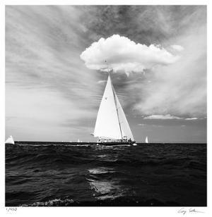 June 15 by Cory Silken