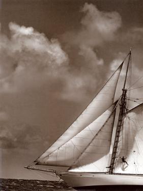 Sepia Sails II by Cory Silken