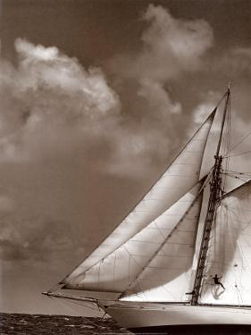 Sepia Sails II by Cory Silken