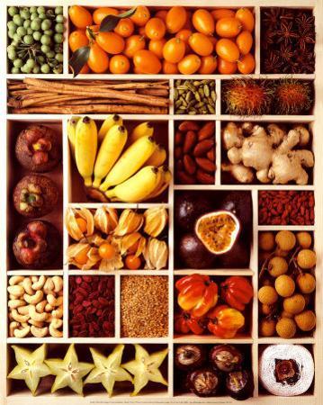 Exotic Fruits by Corynne Ryman