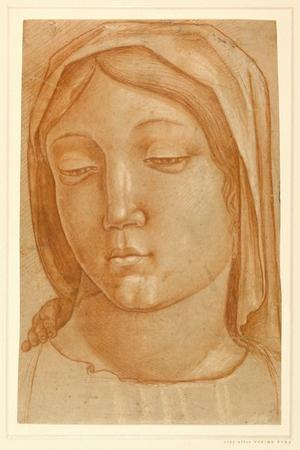 Head of the Virgin, with the Fingers of a Child's Hand on Her Right Shoulder