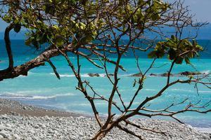 Costa Rica Light Blue Water Beach Photo Poster Print
