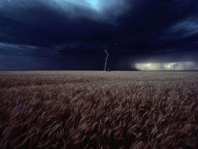 Lightning Flashes Above a Kansas Wheat Field