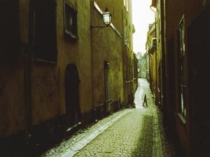 Narrow Street in Stockholm by Cotton Coulson