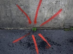 Neon Paint Points to a Plant Emerging from a Crack in the Sidewalk by Cotton Coulson