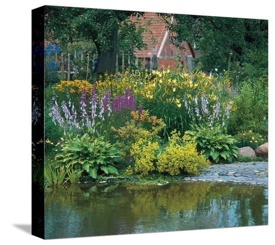 Country Flower Garden--Stretched Canvas Print