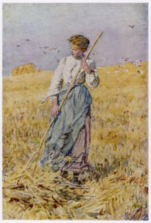 Country Girl Gleans after the Oat Harvest