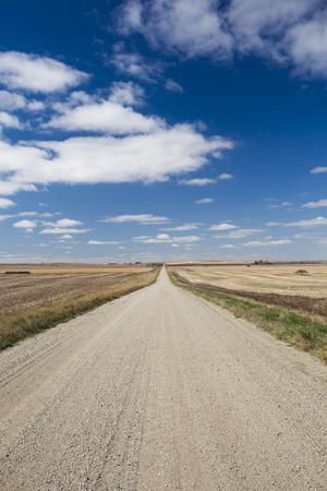 https://imgc.allpostersimages.com/img/posters/country-road-strasburg-north-dakota-usa_u-L-PN6Q1W0.jpg?p=0