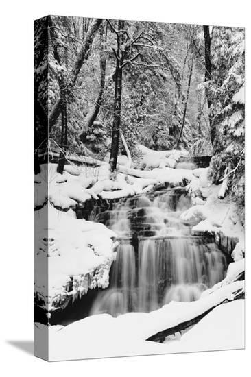 Country Stream in Winter, Michigan--Stretched Canvas Print