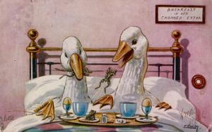 Couple of Geese Breakfast in Bed: Their Meal Includes Eggs Can They be Cannibals?