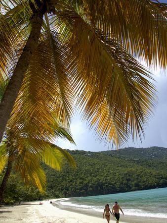 https://imgc.allpostersimages.com/img/posters/couple-walking-on-beach-magens-bay-st-thomas-us-virgin-islands-caribbean_u-L-P245VV0.jpg?artPerspective=n