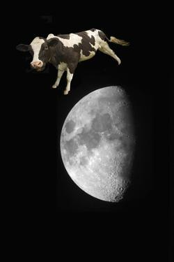 Cow over the Moon
