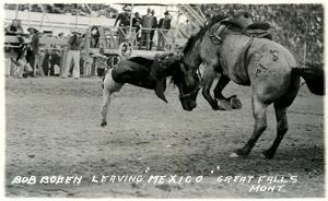 Cowboy Bucked Off Bronco, Montana