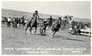 Cowboy Bulldogging, Montana