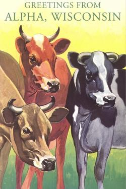 Cows, Greetings from Alpha