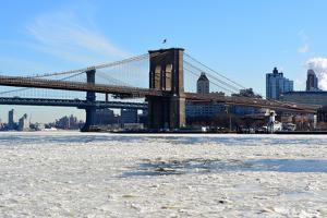 New York City by cpenler