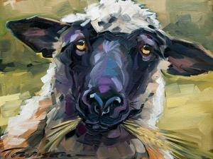 Bless Ewe by CR Townsend