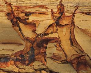 Cracked Sand Stone