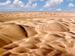 Desert Landscape by Craig Aurness