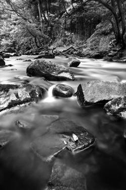 Gloss by Craig Howarth