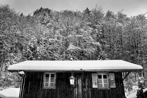 Snow Chalet by Craig Howarth