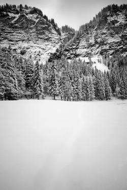 Snow Field by Craig Howarth