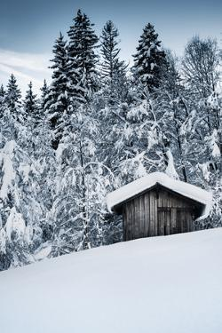 Snow Shelter by Craig Howarth