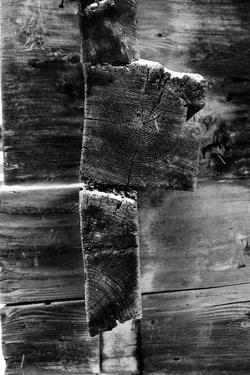 Snow Wood by Craig Howarth