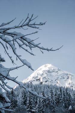 White Peak by Craig Howarth
