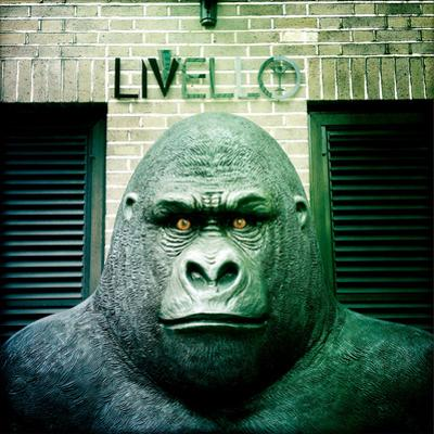Gorilla Sculpture by Craig Roberts